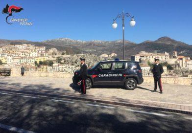 Sorprese a rubare legname in area boschiva comunale. Due persone arrestate dai Carabinieri.